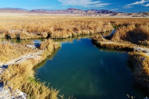 Tecopa-Hot-Springs